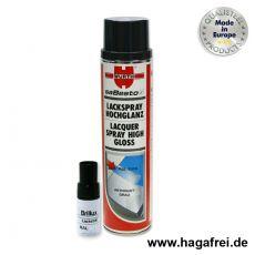 Zaunpflege- / Zaunreparatur-Set anthrazitgrau RAL 7016